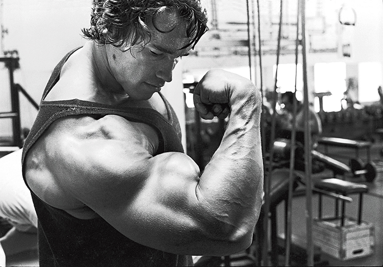 Arnold Schwarzenegger In the Gym, Solo Muscle & Fitness November 2011