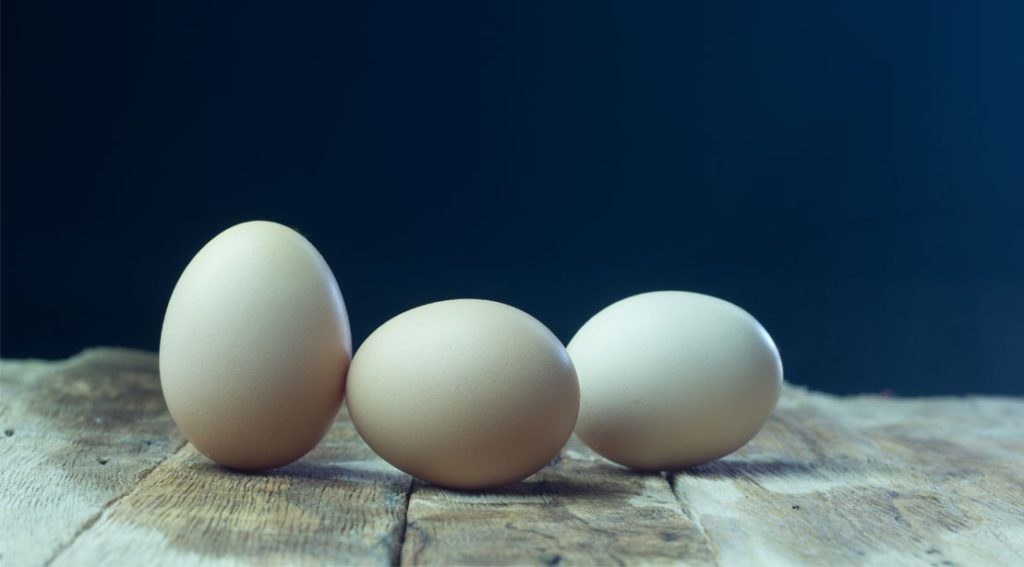 1109-eggs-ss 2