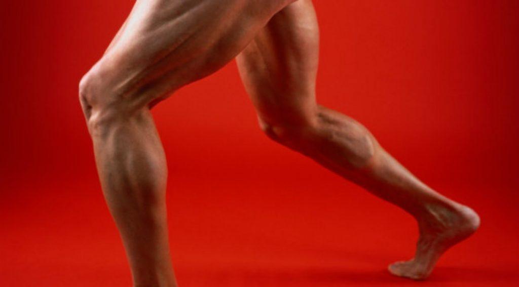 Legs_0 4