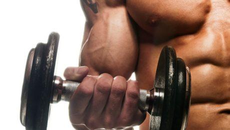 big-biceps-now